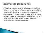 14-Incomplete Dominance and Codominance