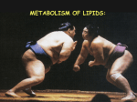 06_Metabolism of lipid
