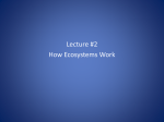 Chapter 3 Lecture #2 How Ecosystems Work