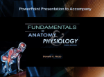 Fundamentals of Anatomy and Physiology, Second Edition