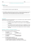 4 Review Worksheet