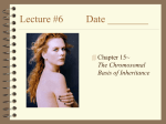 Lecture #6 Date ________ Chapter 15~ The Chromosomal