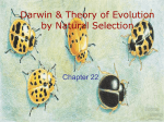 Theory of Evolution & Microevolution
