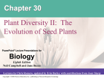 Seeded Plants