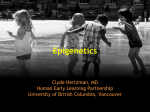 Presentation on Epigenetics - UBC Blogs
