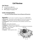 Cell Review Cell Theory Levels of Organization Organelle