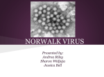 CS2 Norwalk Virus Powerpoint Presentation