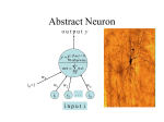 Abstract Neuron  { y