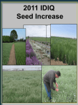 2011 IDIQ Seed Increase