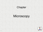 Microscopy Chapter 1
