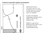 Carbon in anaerobic aquatic environments
