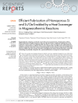 Efficient Fabrication of Nanoporous Si in Magnesiothermic Reactions