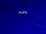 HOPS Powerpoint
