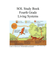 SOL Study Book Fourth Grade Living Systems