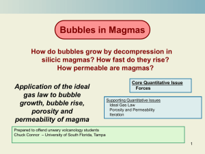 Bubbles in Magma Module - University of South Florida