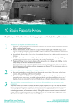 10 Basic Facts to Know