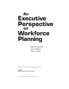 Executive Perspective Workforce Planning