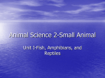 Animal Science 2-Small Animal Unit I-Fish, Amphibians, and Reptiles