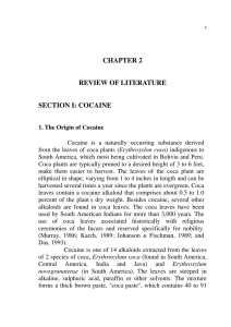 CHAPTER 2 REVIEW OF LITERATURE SECTION I: COCAINE