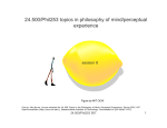 24.500/Phil253 topics in philosophy of mind/perceptual experience session 8 Figure by MIT OCW.