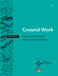 Ground Work: Basic Concepts of Ecological Restoration