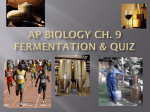AP Biology Ch. 9 Fermentation and Quiz Ppt