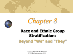 Race and ethnic group stratification