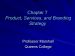 Chapter 7 Product, Services, and Branding Strategy