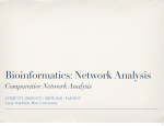 Bioinformatics: Network Analysis Comparative Network Analysis Luay Nakhleh, Rice University