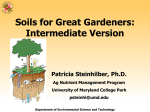 Soils for Great Gardeners: Intermediate Version Patricia Steinhilber, Ph.D. Ag Nutrient Management Program
