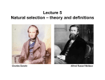 Lecture 5 Natural selection – theory and definitions Charles Darwin Alfred Russel Wallace