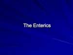 The Enterics