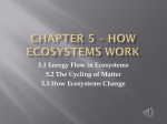 Chapter 5 * How Ecosystems work