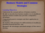 Business Models and Common Strategies