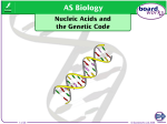 Nucleic Acids and the Genetic Code