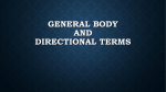 General Body and Directional Terms