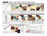 Build a Paper Model of Transfer RNA (tRNA)