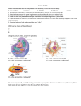 Review Module Macromolecules, Cell Theory, Organelles, Cell