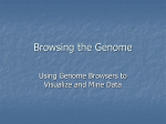Browsing the Genome