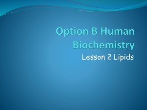 Option B4 Lipids 2