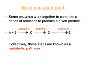 Enzymes continued