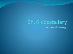 Ch. 6 Vocabulary