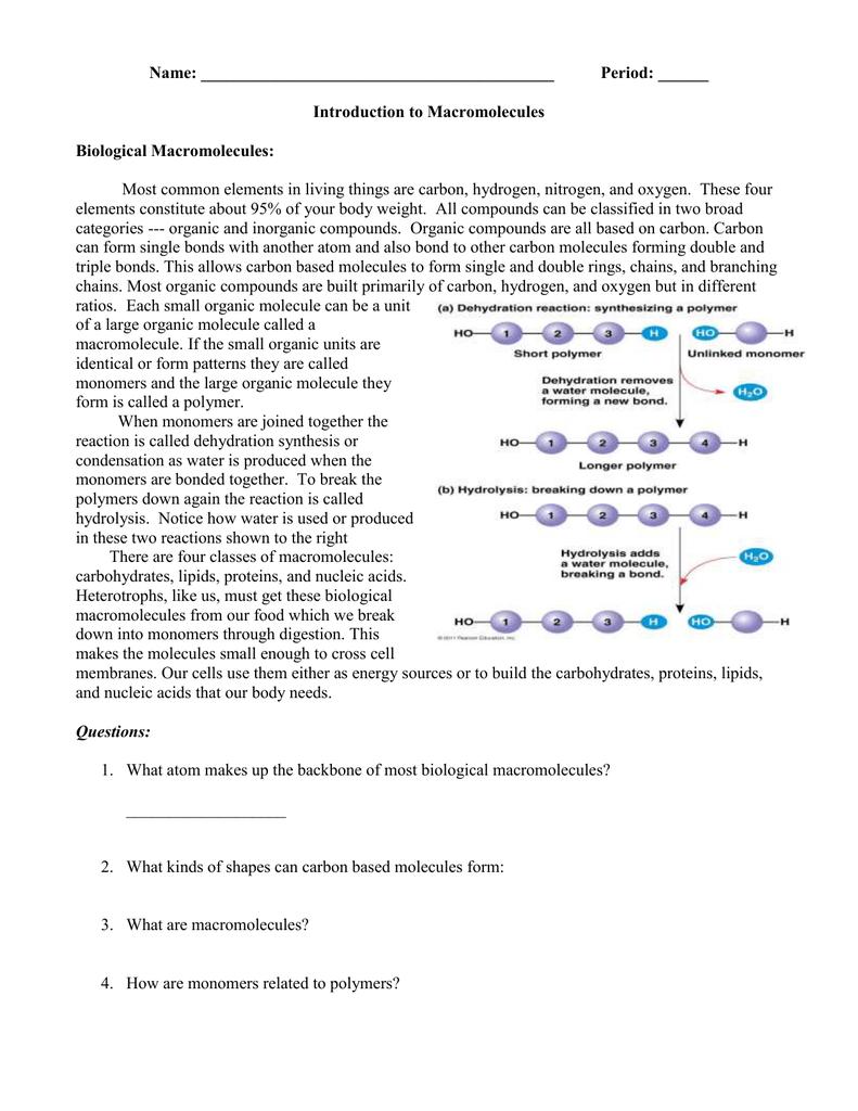 Worksheets Macromolecules Worksheet bio macromolecules worksheet doc