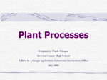 Plant Processes - Georgia CTAE | Home