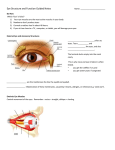Eye Structure and Function Guided Notes Name: Do Now Which