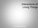 Interactions of Living Things Power Point