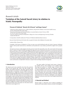 Variation of the Lateral Sacral Artery in relation to Sciatic Neuropathy