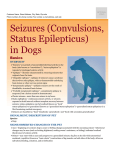 seizures_in_dogs