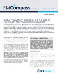 Productivity and the Role of Technology in Emerging Markets