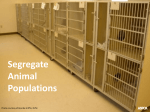 Segregate Animal Populations